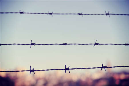 war refugee: Freedom concept: barbed wire iron fence closeup with blur city in the background and vintage filter effect.