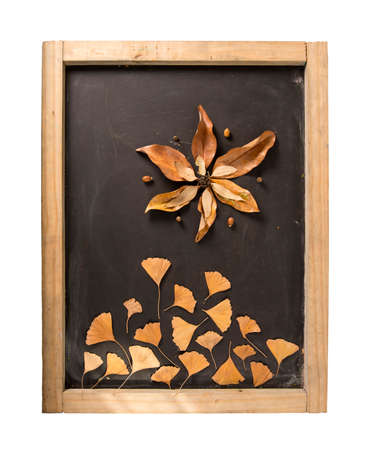 caes: Fall composition: autumn leaf foliage elements on blackboard making flower shape. Ideal for season greeting card, thanksgiving or campaign. Includes clipping path so you can easily cut and paste.
