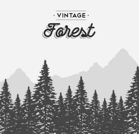 forrest: Vintage forest concept illustration with retro text label and winter tree landscape. EPS10 vector.