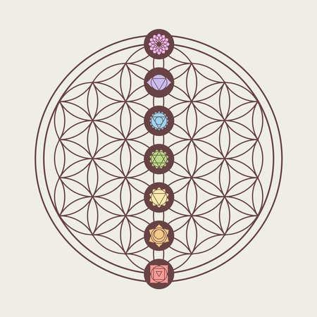 Zen concepto de ilustración, los siete chakras principales iconos colocados en la flor del diseño de la geometría sagrada la vida. Ilustración de vector