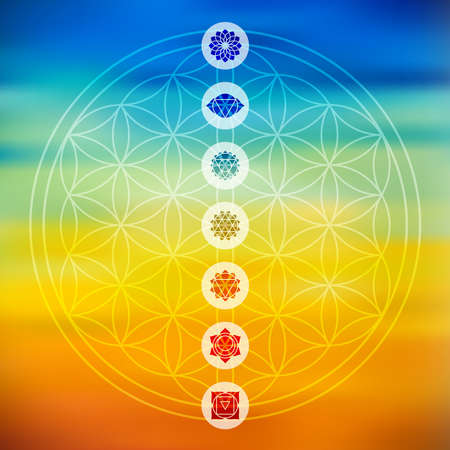 Sacred geometry Flower of Life design with seven main chakra icons over colorful blurred gradient background. Illustration