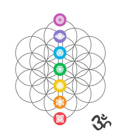 chakra energy: Colorful icons, main chakras on flower of life. Sacred geometry illustration with handmade om calligraphy decoration.