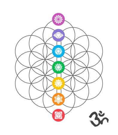 simbol: icone colorate, chakra principali sul fiore della vita. illustrazione geometria sacra con decorazione a mano om calligrafia.