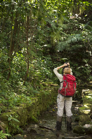 explores: CHIAPAS, PALENQUE, MEXICO – MARCH 1, 2016: young female tourist traveler explores with binoculars in Palenque archaeological site rainforest.