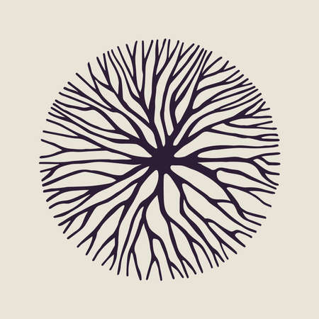 개념: 컨셉 디자인, 창조적 인 자연 예술 나뭇 가지 또는 뿌리의 추상적 인 원형 모양입니다. 벡터. 일러스트