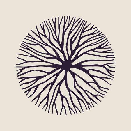 kavramsal tasarım, yaratıcı doğa sanat için ağaç dalları ya da kökleri soyut daire şekli illüstrasyon. vektör. Çizim