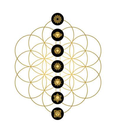 Main yoga chakras gold icons on flower of life. Minimalist sacred geometry illustration.