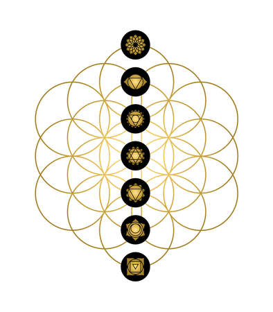 Main yoga chakras gold icons on flower of life. Minimalist sacred geometry illustration.