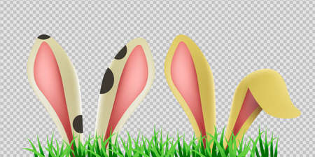Bunny ears hiding in grass on transparent background. Isolated rabbit ear, easter animal decoration.