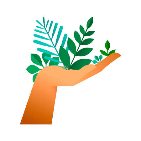 Human hand holding green leaves, cupping gesture on isolated background. Nature help concept or environment conservation illustration. Illustration