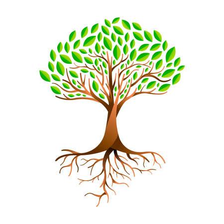 Árbol de hojas verdes con ramas y raíces. Concepto de naturaleza, ayuda al medio ambiente o cuidado de la tierra. Ilustración de vector