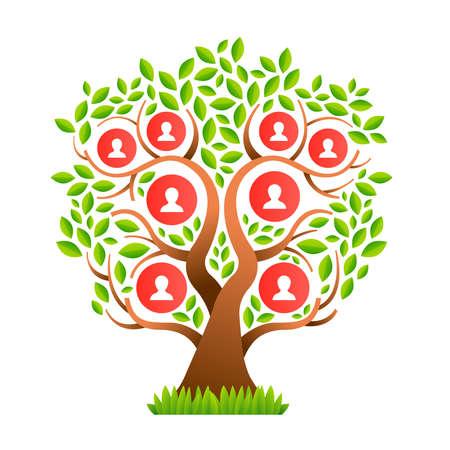 Stamboom sjabloon concept met mensen pictogrammen en kleurrijke groene bladeren voor de geschiedenis van levensgeneraties. vector.