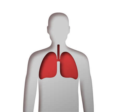 Paper cut human body with red lung organ inside. X ray anatomy view of man silhouette on isolated white background for medicine or health problem concept.