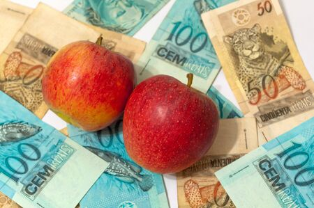 actividad econ�mica: actividad econ�mica en la venta de manzanas