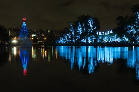 huge christmas tree: Christmas Tree lightened at night in Sao Paulo Brazil