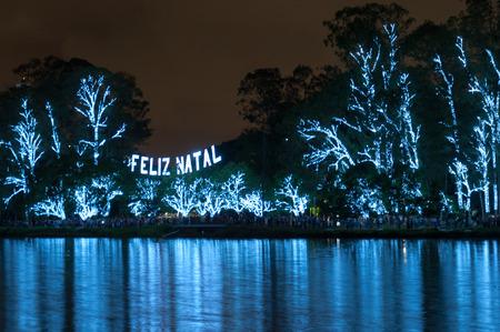 Christmas Tree lightened at night in Sao Paulo Brazil photo