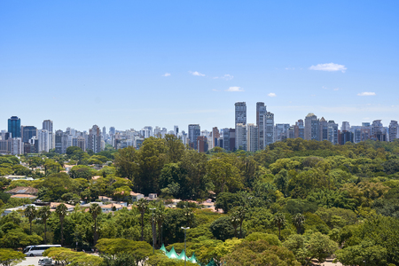 View of houses and buildings next to the Ibirapuera Park in the city of Sao Paulo, Brazil.
