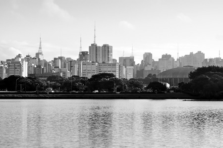 Buildings on the Paulista Avenue seen from inside the Ibirapuera Park. Sao Paulo city, Brazil. 免版税图像