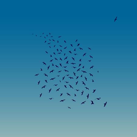 Seagulls Flying as night falls. Vector illustration of Flying Seagulls Silhouettes. Illustration