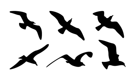 Seagulls Silhouettes. Vector Illustration of Seagulls Silhouettes. 版權商用圖片 - 75475848