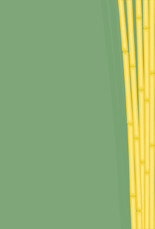 Exotic Bamboo Background. Vector Illustration of a Bunch Bamboos for using as Background