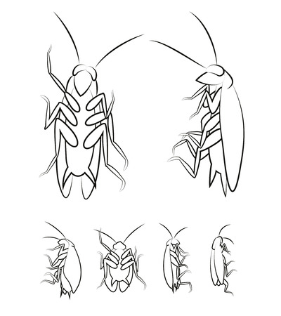 Cockroach. Vector Illustration Of Various Cockroaches From Different Views. Иллюстрация