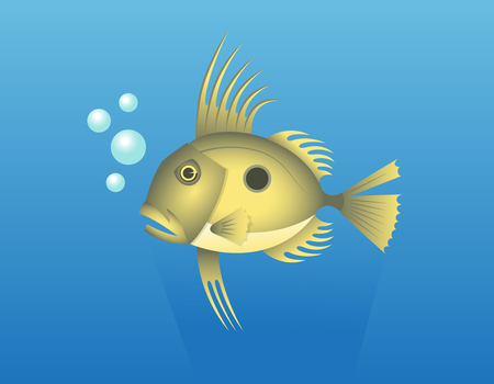 John Dory Fish. Vector Illustration Of A John Dory or Saint Pierre Fish or Saint Peter Fish or Zeus faber.