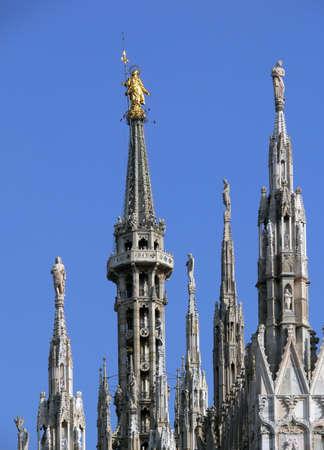 particolare: particolare del Duomo di Milano