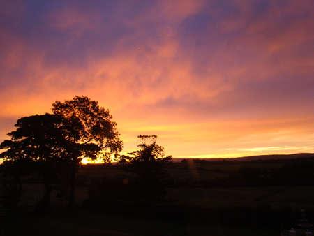 siloette: Irish Sunrise
