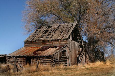 Oude hooi schuur met een boom op de achtergrond rustieke foto