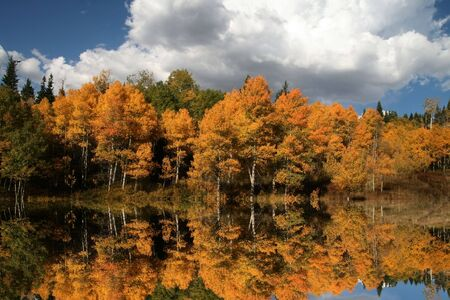 orange grove: Mountain Lake in the fall showing reflections  Stock Photo