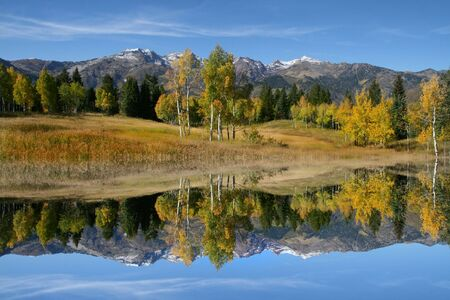 orange grove: Reflections on in mountain pond in the fall