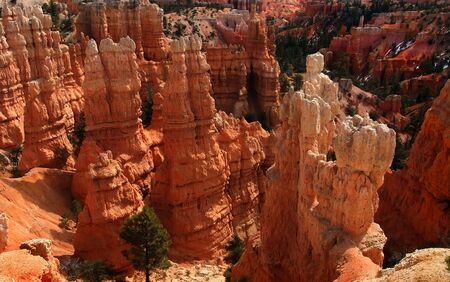 View of the red rock formations in Bryce Canyon National Park