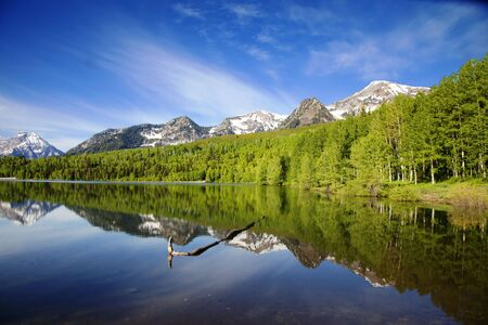 High mountain lake in the Summer showing Reflections photo