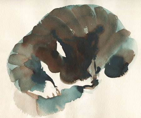 Hand drawn sleeping cat portrait. Watercolor blotched taby fluffy pet. Painting abstract animal illustration Archivio Fotografico - 129158884
