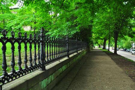 iron fence: Iron fence by sidewalk