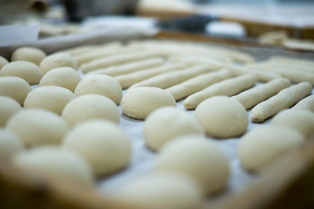 Freshly made bread dough on a tray showing rolls and frenchies ready to be baked.