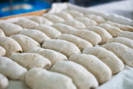 Freshly made bread dough on a tray shot at a local bakery  bread factory. Showing a multigrained loaf that wll later be baked into a delicious fresh baked bread roll.