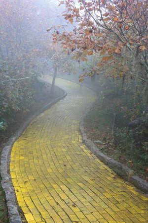 너도밤 나무 산, 노스 캐롤라이나에서 숲을 통해 와인딩 노란색 벽돌 길 스톡 콘텐츠