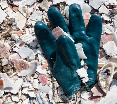 Rubber glove in pile of sea shells in Wellfleet, Massachusetts on Cape Cod