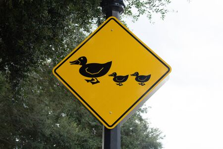 Yellow duck family crossing sign warns drivers to slow down