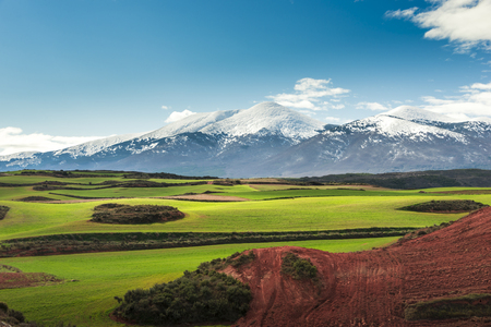In the background the peak of Moncayo natural park and first term and beautiful green fields
