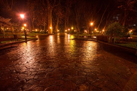 Solitary San Francisco park at night.Oviedo.Asturias.Spain