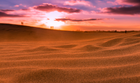 Sunset and clean sand in the dunes of Maspalomas.Isla de Gran Canaria