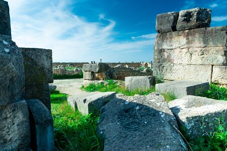 Volubilis, ancient Roman city. Morocco. Best Roman archaeological site in North Africa Zdjęcie Seryjne