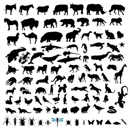100 Animal Silhouettes Vector