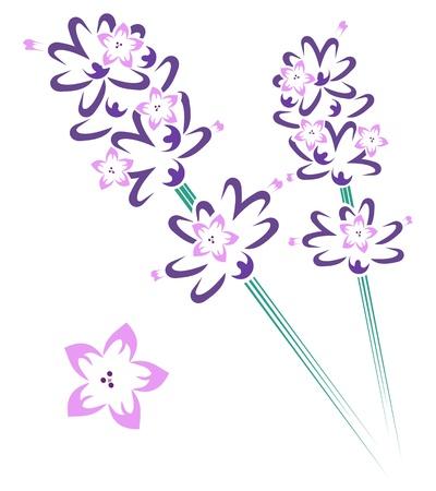 Lavender stem & flowers Illustration