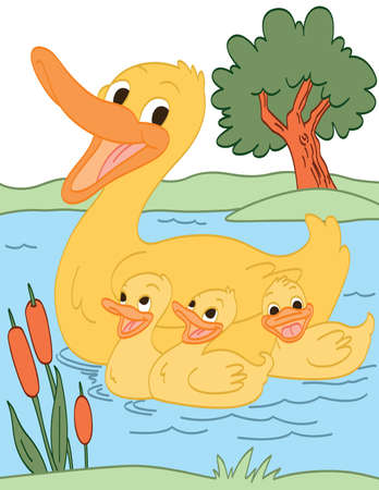 baby swim: Duck Family