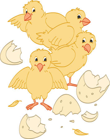 Hatched Chicks Stock Illustratie