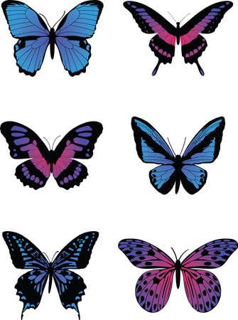 カラフルな蝶  イラスト・ベクター素材